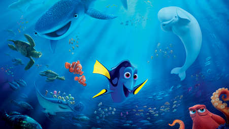 000_finding_dory_000_-_254